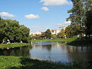 Stachek186a pond04.JPG