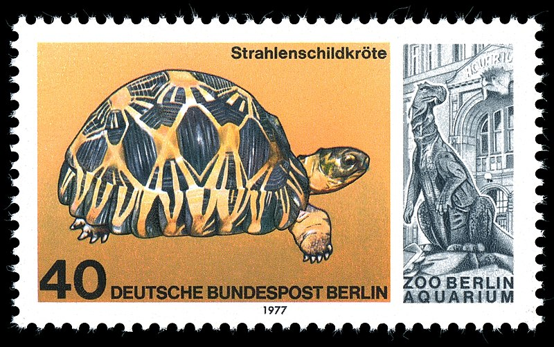 Payl:Stamps of Germany (Berlin) 1977, MiNr 554.jpg