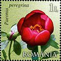 Stamps of Romania, 2011-47.jpg