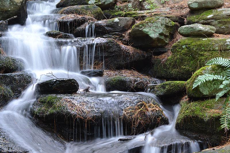File:Stanley Park waterfall.JPG