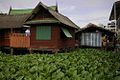 Stilt house Chao Phraya Bangkok copy.jpg