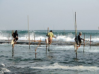 Tourism in Sri Lanka - Stilt fishing is one of the traditional fishing methods in Sri Lanka. It cannot be found in any other part of the world.