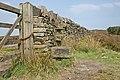 Stone Step Stile - geograph.org.uk - 449855.jpg