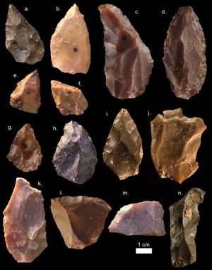 Jebel Irhoud - Stone tools found at Jebel Irhoud