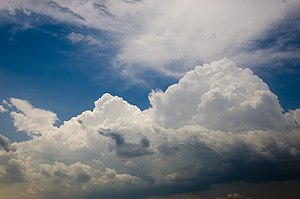 Weather - Cumulus mediocris cloud surrounded by stratocumulus