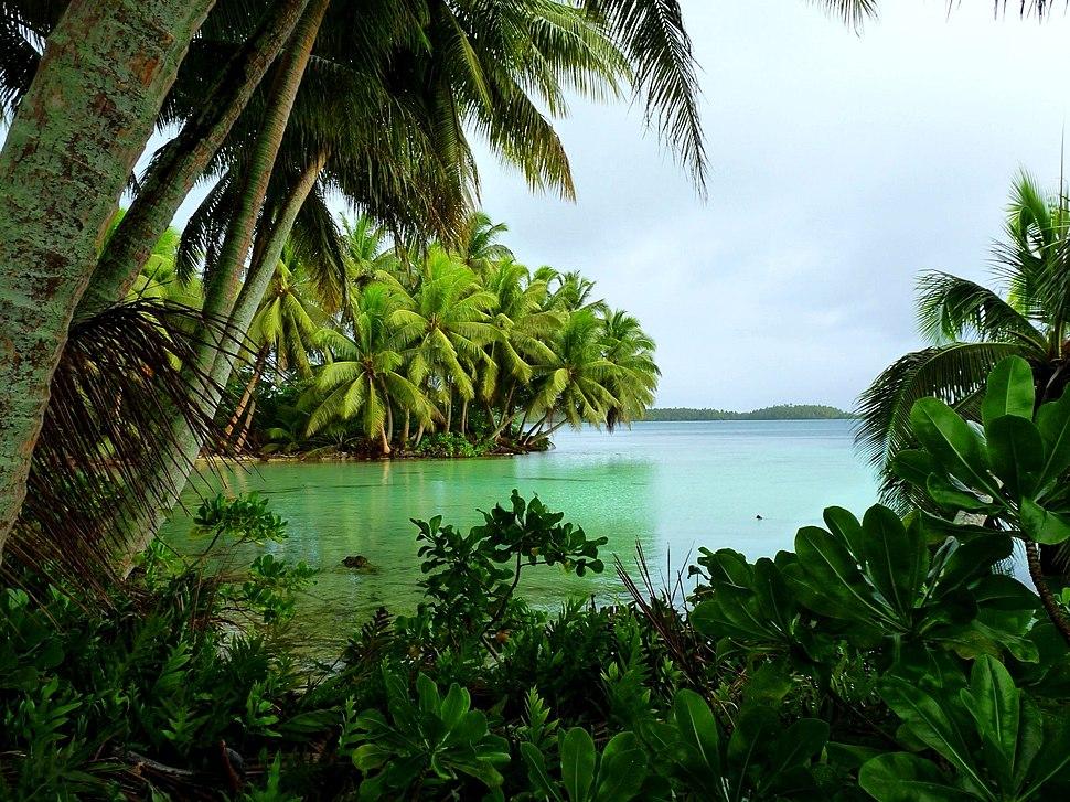Strawn Island at Palmyra Atoll NWR (5123999194)