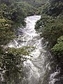 Stream flowing in Valparai Nature of Valparai IMG 20180714 173422294 BURST000 COVER TOP.jpg