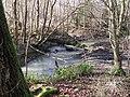Stream near Goffs Copse - geograph.org.uk - 1152662.jpg