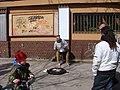 Street musician on steel something (7122156135).jpg