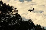 Student pilot takes flight 150129-M-PJ332-027.jpg