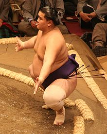 Sumo May09 Shotenro.jpg