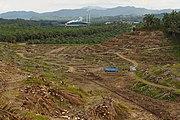 Sungai-Mangis Sabah Tamaco-Oil-Mill-2-01a.jpg