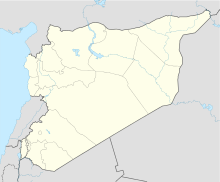 Palmyra is located in the center of Syria.