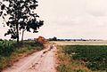 Szlachcin (okolice), starotorze, Sredzka Kolej Dojazdowa 25.6.2000r.jpg