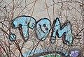 TOM, graffiti Braunhirschenpark, Vienna.jpg