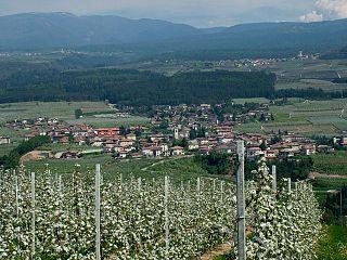 Predaia Comune in Trentino-Alto Adige/Südtirol, Italy
