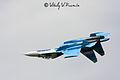 Tambov Airshow 2008 (65-12).jpg