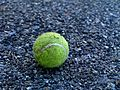 Tennis ball on ground.jpg
