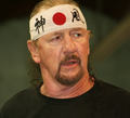 TerryFunk2013Cropped.png