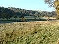 The Avon valley. - geograph.org.uk - 263141.jpg