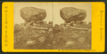 The Elevated Boulder, Bartlett, N.H, by Pease, N. W. (Nathan W.), 1836-1918.png