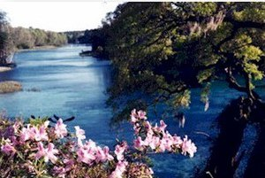 Rainbow Springs - Rainbow Springs, at the head of Rainbow River