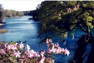Rainbow River - Rainbow Springs, at the head of the Rainbow River