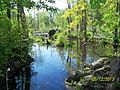 The Lawrence Brook, Monmouth Junction, New Jersey USA May 2013 - panoramio (1).jpg