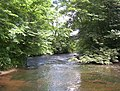 The North Calder Water - geograph.org.uk - 1708723.jpg