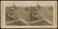 The Race at Mammoth Park, Long Branch, N.J, from Robert N. Dennis collection of stereoscopic views 6.png