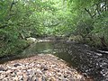 The River Font - geograph.org.uk - 960021.jpg