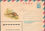 The Soviet Union 1980 Illustrated stamped envelope Lapkin 80-275(14289)face(The common pheasant).jpg