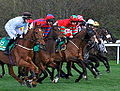The bet365 Gold Cup (8687461192).jpg
