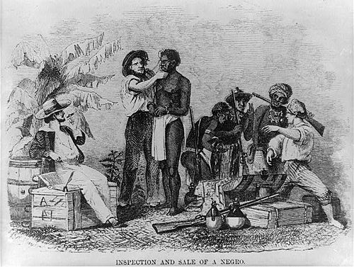 A slave being inspected The inspection and sale of a slave.jpg