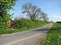 The road to Beachamwell - geograph.org.uk - 1269001.jpg