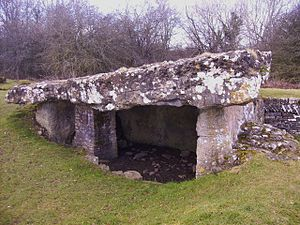 Tinkinswood - Inside the burial chamber with the capstone on top