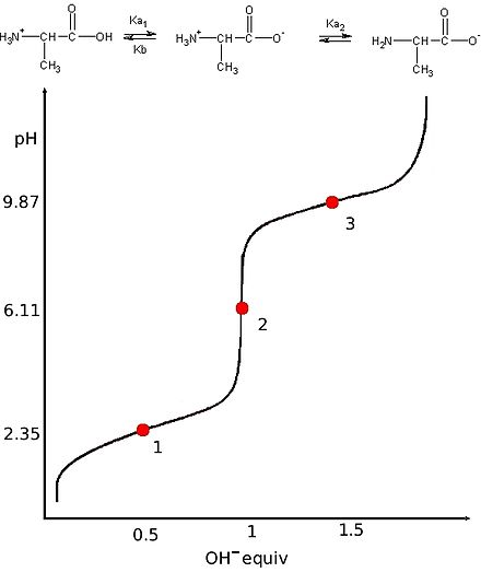 This is an ideal titration curve for alanine, a diprotic amino acid. Point 2 is the first equivalent point where the amount of NaOH added equals the amount of alanine in the original solution. Titration alanine.jpg