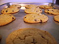 Toll House cookies.jpg