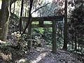 Torii of Daigaku Inari Shrine.jpg