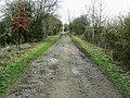 Trackbed of the Midland and South Western Railway, near Baunton - geograph.org.uk - 1201843.jpg