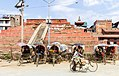 Trailoya Mohan Narayan Temple after Earthquake- Basantapur, Kathmandu Nepal-0374.jpg