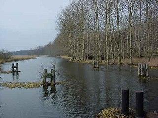 Trebel (river) river in Germany