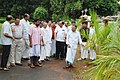 Tree planting in Thrissur Town Hall-1.jpg