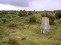 Trig point on Beaulieu Heath East, New Forest - geograph.org.uk - 32393.jpg