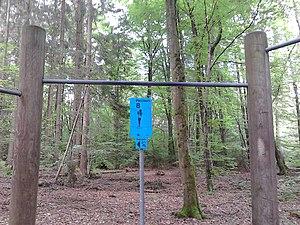 Trimm-Dich-Pfad Grünwalder Forst Klimmzüge.jpg
