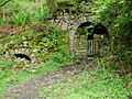 Tunnels In the Woods - geograph.org.uk - 825704.jpg