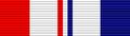 USA - TX Combat Service Ribbon.png