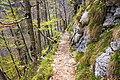 Ukanc - trail 5.jpg