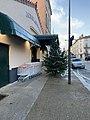 Un magasin à Mâcon et un sapin de noël en janvier 2021 à Mâcon.jpg