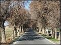 Until the end way..., Pishva, Varamin خیابان ورودی روستای خاوه، پیشوا - panoramio.jpg